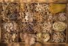 Один из двух итальянцев выбирает цельнозерновые макаронные изделия