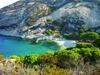 Итальянский остров Монтекристо «захватили» крысы