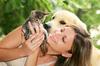 В Риме появится вадемекум по содержанию домашних животных