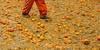 До начала апельсиновой битвы - символа исторического карнавала в Ивреа - осталос