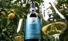 Итальянские вина: лучшая покупка в 2015 году - Falanghina Sannio