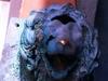 В море у берегов Калабрии найден бронзовый лев