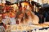 Рождественские ярмарки Италии готовятся к открытию
