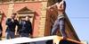 В Палермо мигрант заблокировал автобус с пассажирами, взобрался на крышу и крича