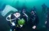 Оригинальные свадьбы: одни женятся под водой, другие – на носилках скорой помощи