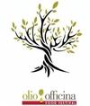 Olio Officina: в Милане пройдет фестиваль, посвященный оливковому маслу