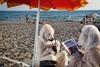 На пляже Остии появилась пара белых медведей