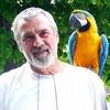 В провинции Вибо-Валентия спасатели вызволили попугая, который звал о помощи