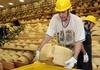 Coldiretti: ущерб в сельскохозяйственной отрасли на 500 млн евро