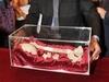 Итальянские ученые подтвердили, что найденные ранее останки принадлежат знаменит
