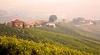 В Пьемонте проходит фестиваль вина Vinum