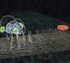 Ученые Пизы изобрели микророботов, способных работать внутри человека