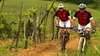 «Tuscany Wine and Bike».