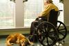 Итальянцу, парализованному из-за врачебной ошибки, возместили ущерб за невозможн