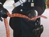 В провинции Рима карабинеры «задержали» полутораметровую змею