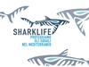 Национальный парк Ла Маддалена: биологи работают над сохранением крупной морской