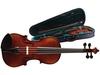 В Риме арестован  известный музыкант, торгующий фальшивыми скрипками