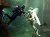 В Портовенере состоялась подводная свадьба