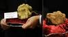 Сто тысяч евро за трюфель на Всемирном аукционе трюфелей в Ланге
