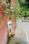 В Риме вновь открыл двери для посетителей один из самых романтичных садов, Roset