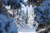 Мороз не отступает: после короткой передышки итальянцев ждут еще дней десять хол