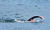 Итальянец совершил самую длинную в мире переправу, проплыв 200 километров из Афр