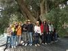 Оливковое дерево Мишель Обамы стало знаменитостью Апулии