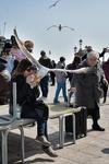 """В Венеции голодные и поэтому слишком агрессивные чайки """"отправили"""" двух туристов"""