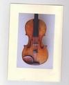 Украденную скрипку помог найти Facebook