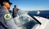 Недалеко от Неаполя затонула яхта, в результате чего один человек погиб, а еще д