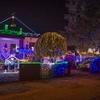 Пенсионер из Тревизо превратил собственный сад в магический рождественский парк