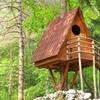 В парке города Бари построят деревню на деревьях для туристов