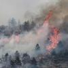 Пожарные борются с огнем в лесах у города Л'Акуила