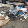 Венеция: штрафы до 500 евро и выдворение с городской территории для тех, кто мус