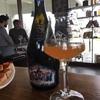 """""""Baladin"""": история итальянского крафтового пива"""