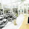 От зимы до лета на 500 квадратных метрах: на площади Пьяцца Дуомо сосуществуют 4