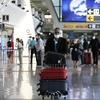 Аэропорты Фьюмичино и Чампино готовятся к введению экспресс-тестов на коронавиру