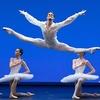 """Хуже """"Холодной войны"""": американцы отказали в визе танцорам Большого театра. Один"""