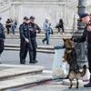 На Пасху в Риме вводится план обеспечения повышенной безопасности туристов и мес