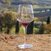 Брунелло и Амароне - самые дорогие вина Италии