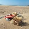На Сардинии отдыхающие взамен собранных пластиковых отходов получат бесплатное м