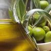 Италия - второй крупнейший европейский экспортер оливкового масла в страны за пр