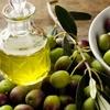 Сколько должен стоить литр качественного оливкового масла в 2019 году?