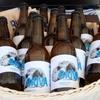 """""""Biova beer"""": пиво, которое рождается из хлебных отходов, идея тpех молодых итал"""