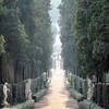 Флорентийские сады Боболи вновь открылись после падения деревьев из-за непогоды