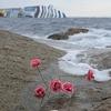 """6 лет назад в Италии затонул крузизный лайнер """"Коста Конкордия"""""""