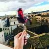 Самые продаваемые вина в Италии: рейтинг 2019