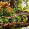 Открытие сада Нимфы в 2021 году: расписание, стоимость билетов, полезная информа