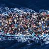 Мигранты: в январе и феврале число прибытий снизилось на 61% по сравнению с 2017