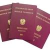 Новоизбранное австрийское правительство обдумывает идею выдачи австрийских паспо